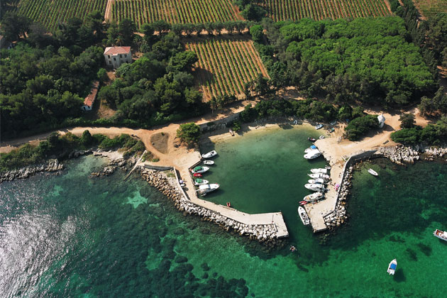 A port and vineyard in St Honorat