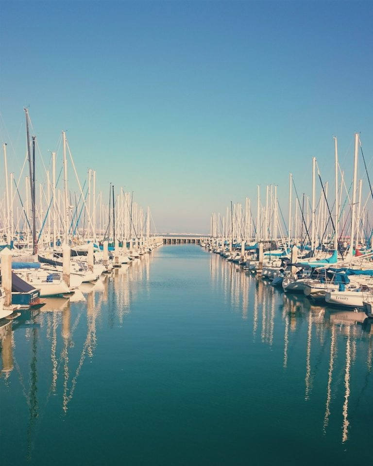 Row of sailboats in the marina of San Francisco