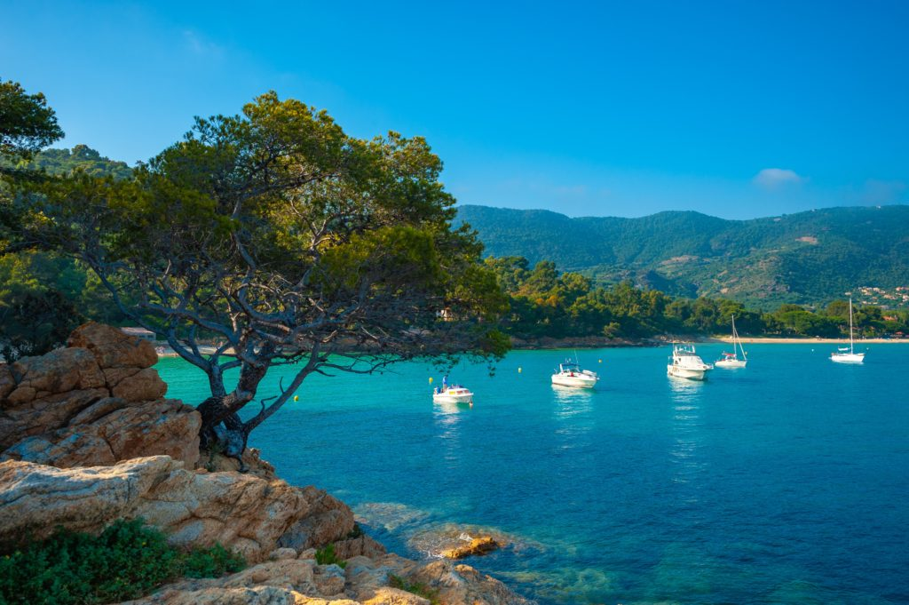 A hidden bay in Le Lavandou with 5 boats anchoring in the middle and the surrounding nature