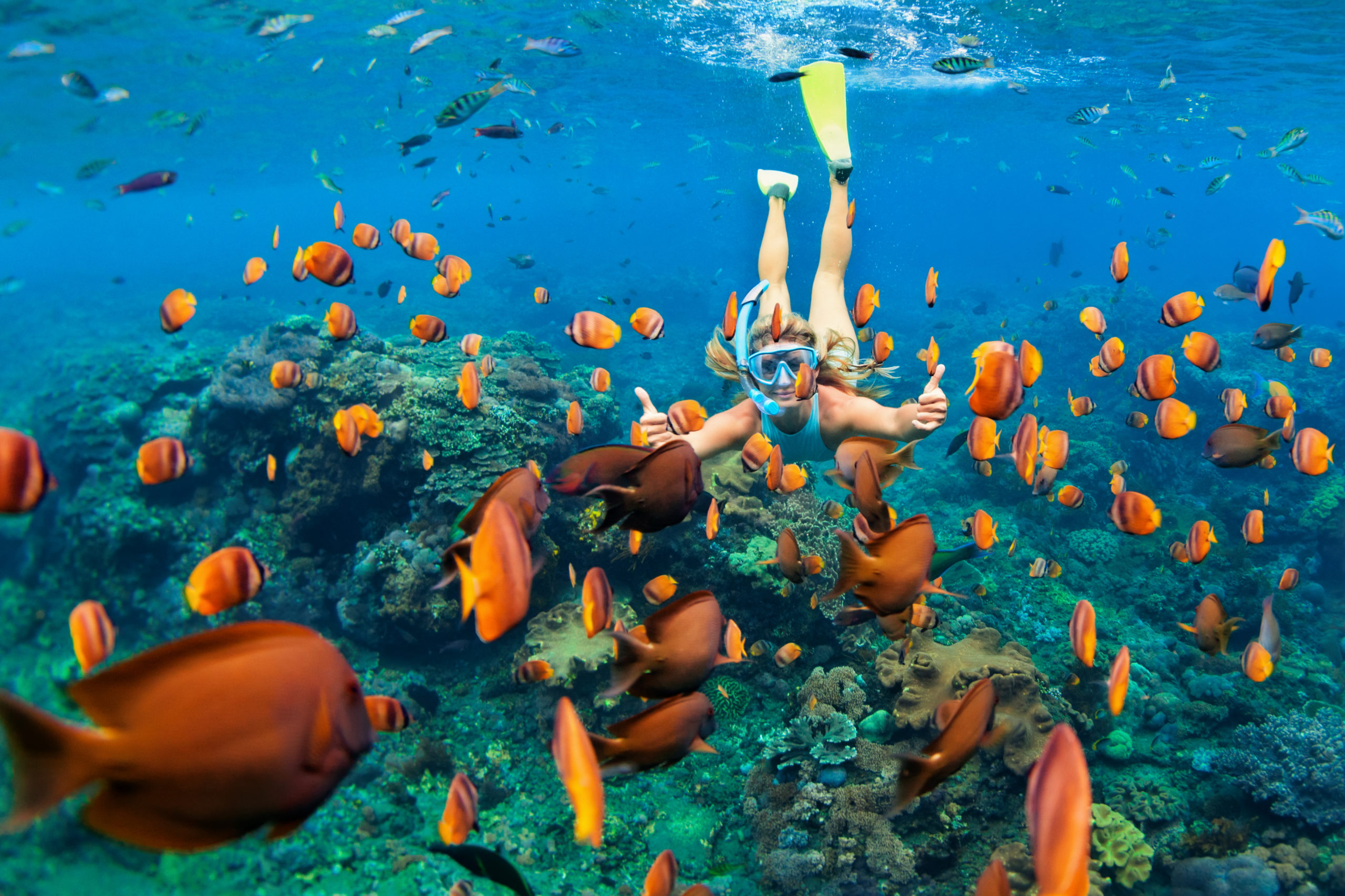 Girl snorkeling underwater among colourful fishes