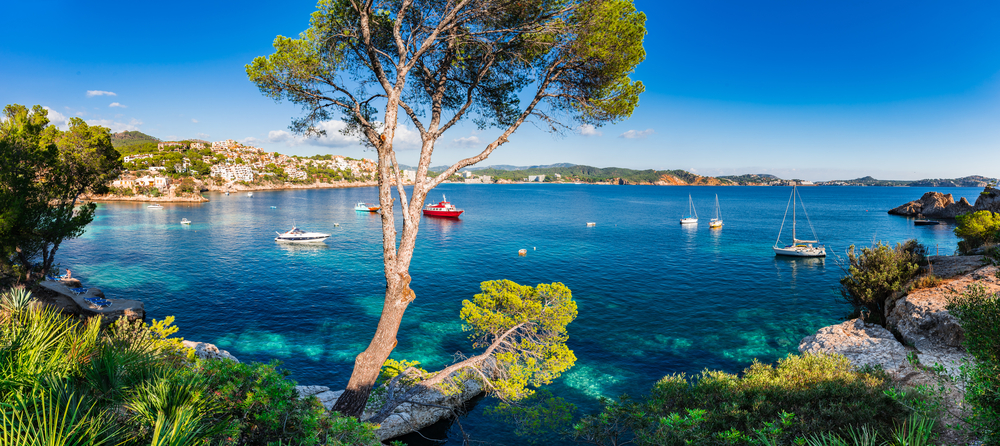 View of the stunning Cala Fornells in Mallorca showing the blue sea, trees and a few anchoring boats