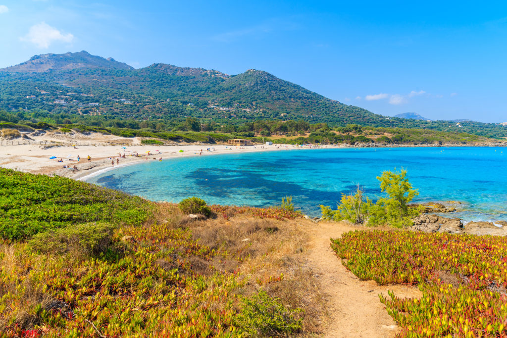 Aerial view of the Saleccia Beach in Crosica with the surrounding hills and greenery and fine sandy beach